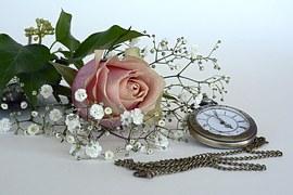 rose-1706449__180